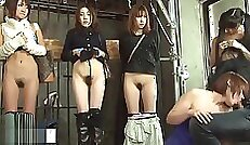 stripper caliente películas